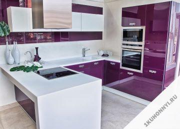Кухня 1047 фото