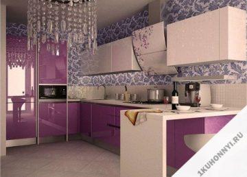 Кухня 581 фото