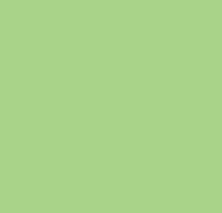 Эвкалипт глянец